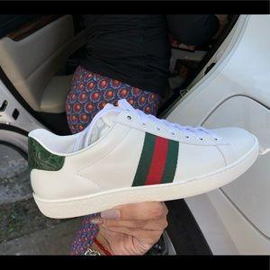 100e5966e Gucci Shoes | Classic Sneakers Slightly Used | Poshmark